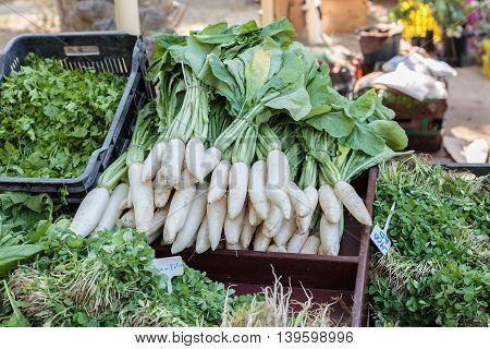 BUDAIYA, BAHRAIN - DECEMBER 27, 2014: Locally grown and Fresh Radish along with other leafy vegetables for sale in Bahrain Farmers Market in Budaiya Botanical Garden.