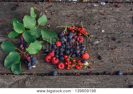 Ripe shadberry, redcurrant and raspberry with branch and leaves scattered on the weathered wooden table in garden. Top view