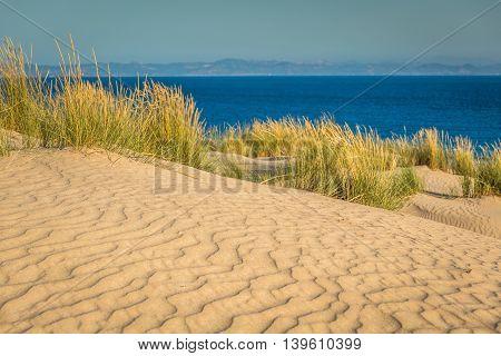 Dune of Punta Paloma Tarifa Andalusia Spain
