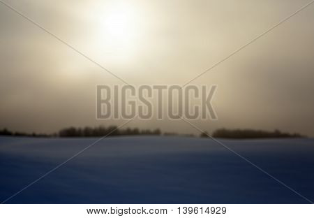 photographed close-up forest in winter, silhouettes of trees in the sun dawn's photos are out of focus - defocus,