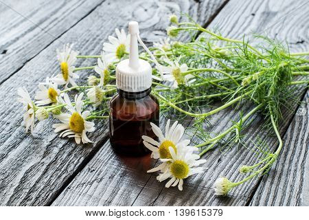 Chamomile essential oil in a brown pharmaceutical bottle and chamomile flowers (Matricaria hamomilla) on a dark wooden table. Selective focus