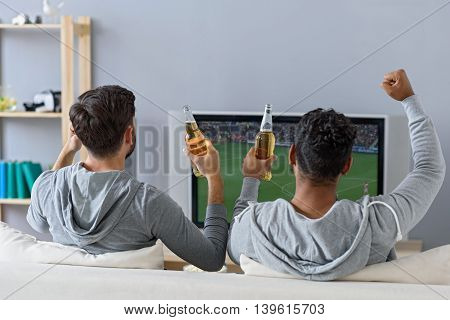 Drinks and sports with friend. Rear view of happy male friends with beer watching tv at home, sitting on couch
