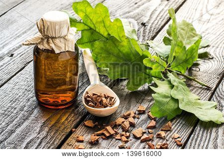 Medicinal plant oak (Quercus). Branch tincture and oak bark in a scoop on a dark wooden table. In herbal medicine used the bark leaves and acorns (used as a substitute for coffee). Selective focus