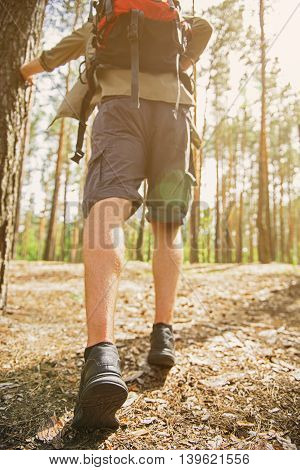 Skillful young tourist is walking in forest. Focus on his back legs