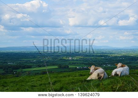 Rural Irish landscape featuring green fields, two clouds and a cloudy sky