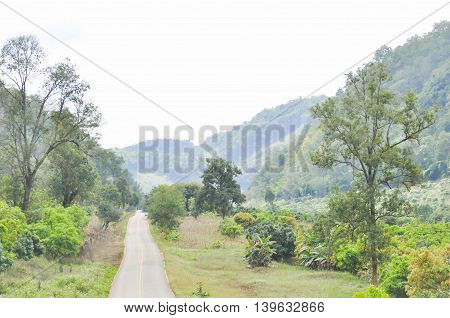 road , tree , sky and mountain background