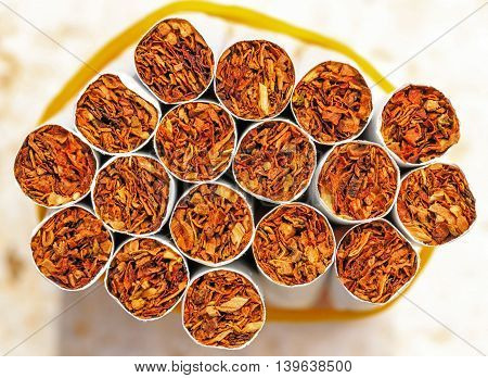 Bundle of uniformly filled tobacoo inside cigarette