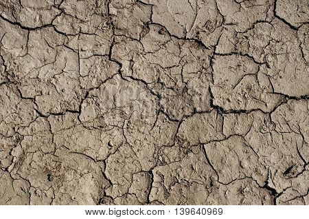 Texture of cracked soil. Cracks appeared after rain.