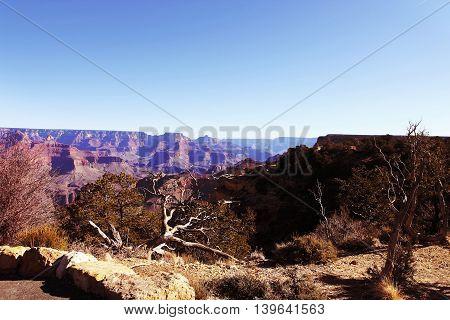 View of Grand Canyon National Park Utah