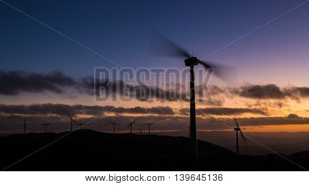 Renewable energy blowing in the winds of New Zealand.