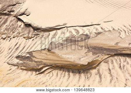 Wind Forms Structures In The Dunes At The Beach