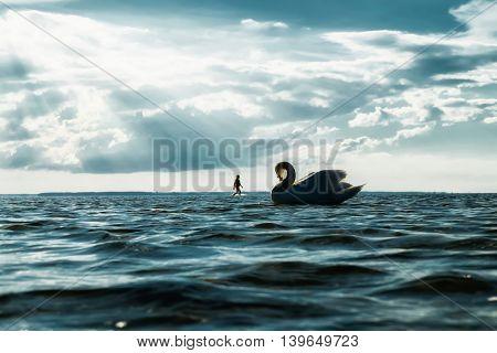 swan and man, summer sea and sunbeams