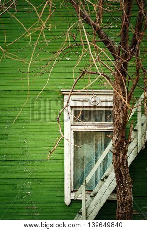 Old Wooden House With Green Wall