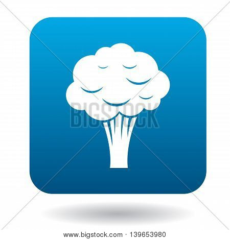 Broccoli icon in flat style on a white background