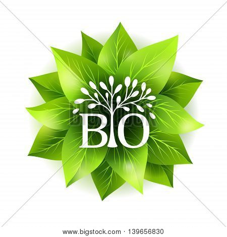 Bio label. Vector badge with green leaves and decorative emblem. Sticker for natural organic products.