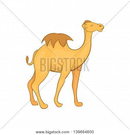 Camel icon in cartoon style isolated on white background. Animal symbol