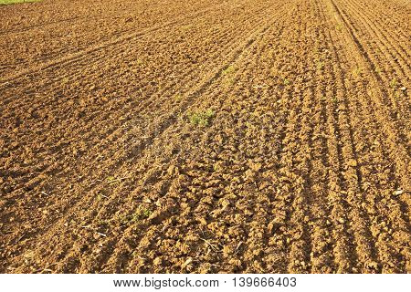 Background of newly plowed field in golden color