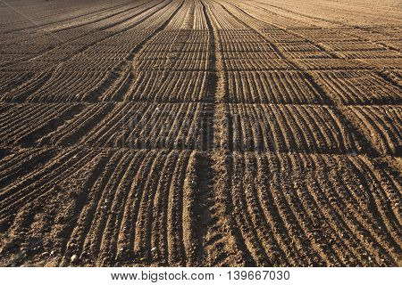freshly plowed field in beautiful late afternoon  light