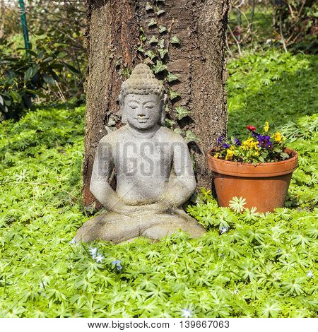 stone buddha in front of a cherry tree