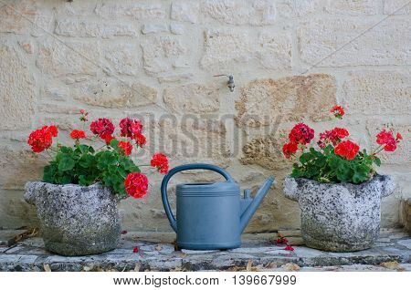 Watering can between two planters full of geraniums