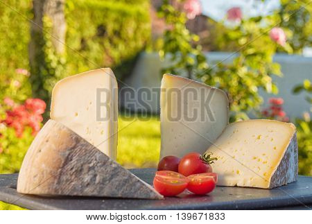 different cheese of South of France with tomatoes