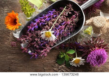 Composition with healing flowers in metallic scoop and small glass bottles on wooden background