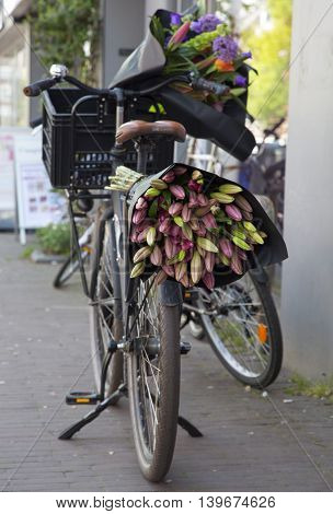 bicycles in Holland in the parking lot on the street. flowers basket tulips bouquet decoration