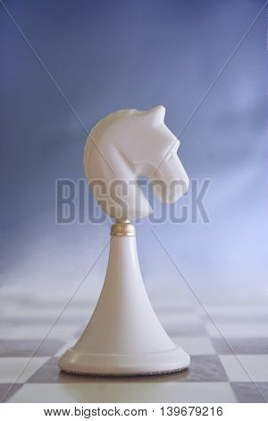 white chess knight on a blue abstract background