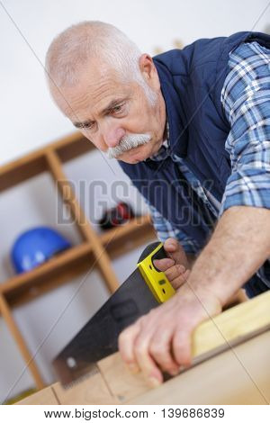 a mature carpenter sawing