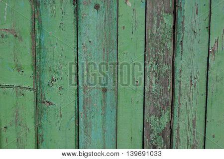 abstract background - green colored vertical fence boards