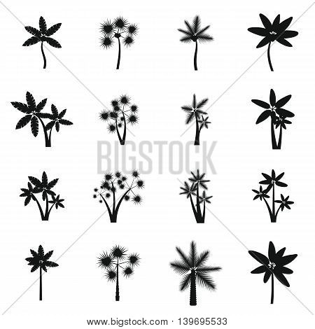 Palm tree icons set in simple style. Tropical exotic plants set collection vector illustration
