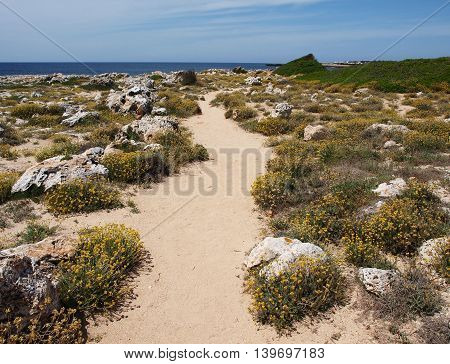 Hiking trail on the seashore in Menorca