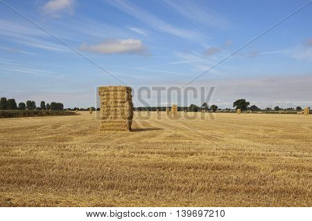 a harvested wheat field with straw stacks under a blue sky in summer