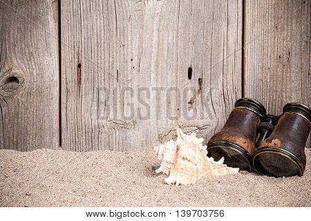 Sea shell with binoculars on on sandy background with old wooden fence