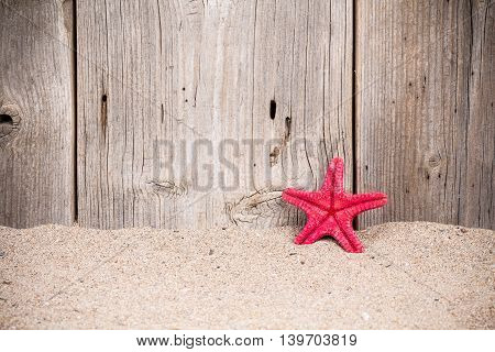 Starfish on on sandy background with old wooden fence