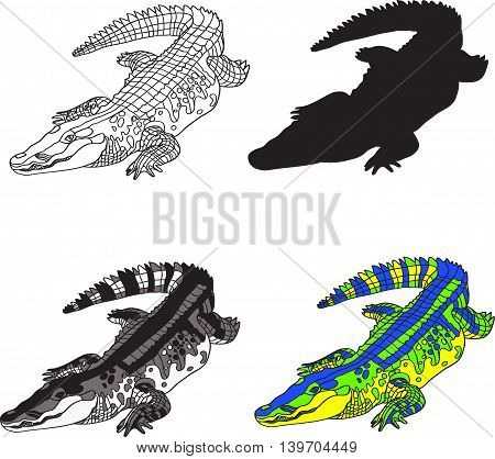 illustration depicting crocodile made contour silhouette black and white spots and bright colors. Vector