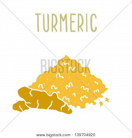 Turmeric powder and root. Vector illustration isolated on white