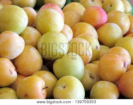 Plums on market of Whittamore's Farm in Markham Ontario