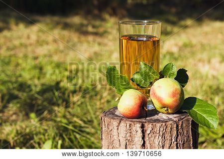 Glass With Apple Juice And Fruit Near It