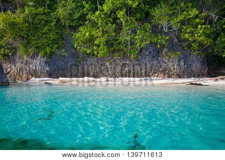 Photo Untouched Tropical Beach in Bali Island. Summer Season Caribbean Ocean. Blue Water. Horizontal Picture