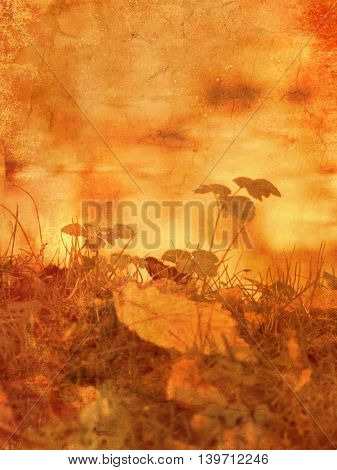 Landscape in fall season - autumn lakeside background in vintage style