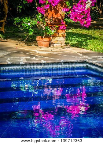 Mexican swimming pool with blue water and flower reflection