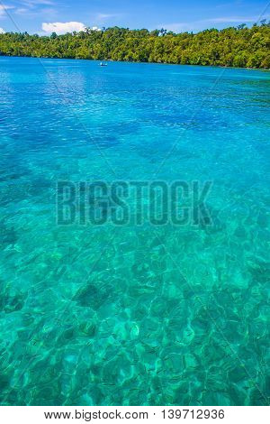 Photo of Man Driving Natural Wood Long Tail Boat Caribbean Ocean. Clear water and blue sky with clouds. Vertical