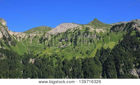 View from Schwammhohe. Steep farmland and mountain in Glarus Canton Switzerland.