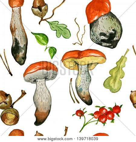 Seamless pattern with wild mushrooms. Hand drawn watercolor painting isolated over white background. Food Clipart illustration. boletus. porcini