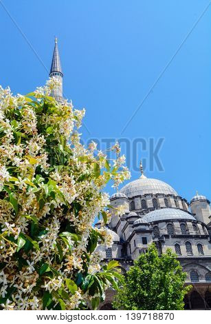minaret and dome with flowers leaves on blue sky background