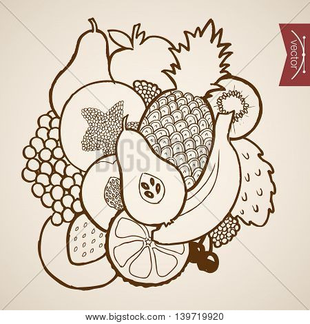 Engraving vintage hand drawn vector fruit kiwi cherry Sketch