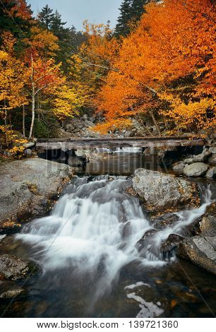 Colorful Autumn creek bridge, White Mountain, New Hampshire.
