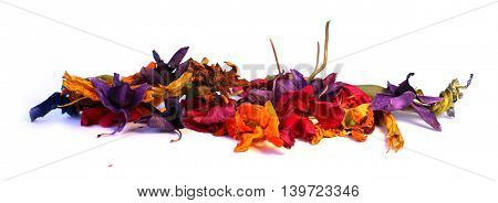 geranium petunia dry delicate flowers leaves and petals of pressed iris orchid marigolds Aquilegia pelargonium isolated on white background scrapbook