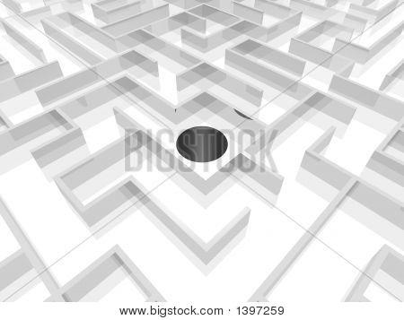 Trick Maze